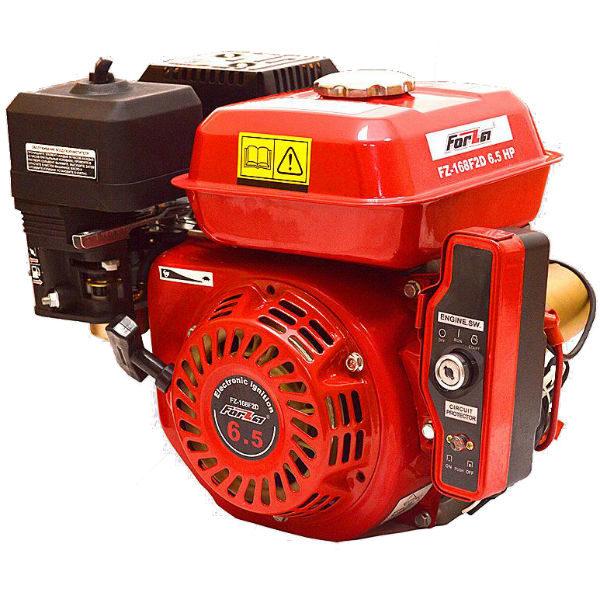 Двигатель Forza 6,5fd-2